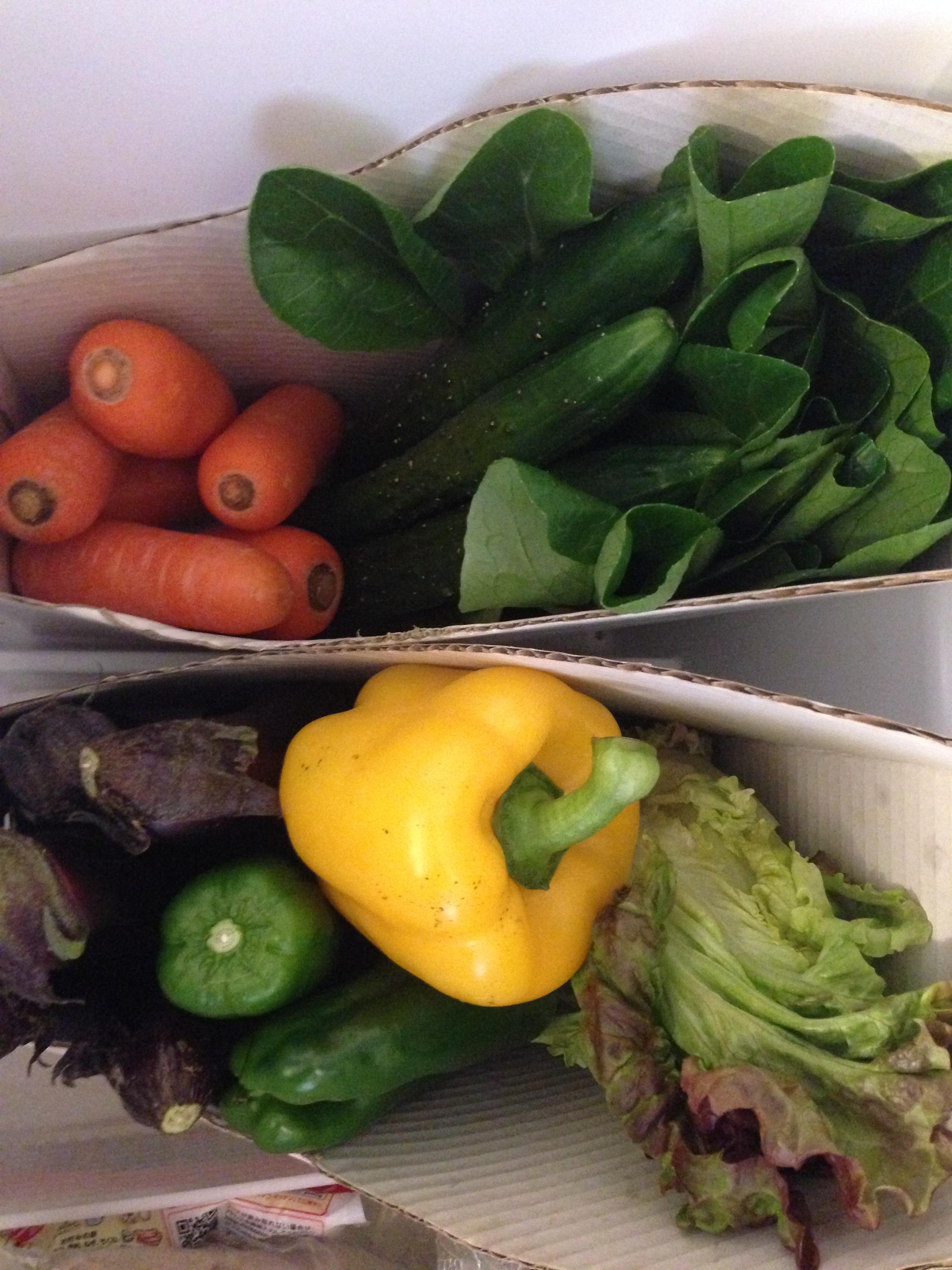 冷蔵庫の野菜収納。