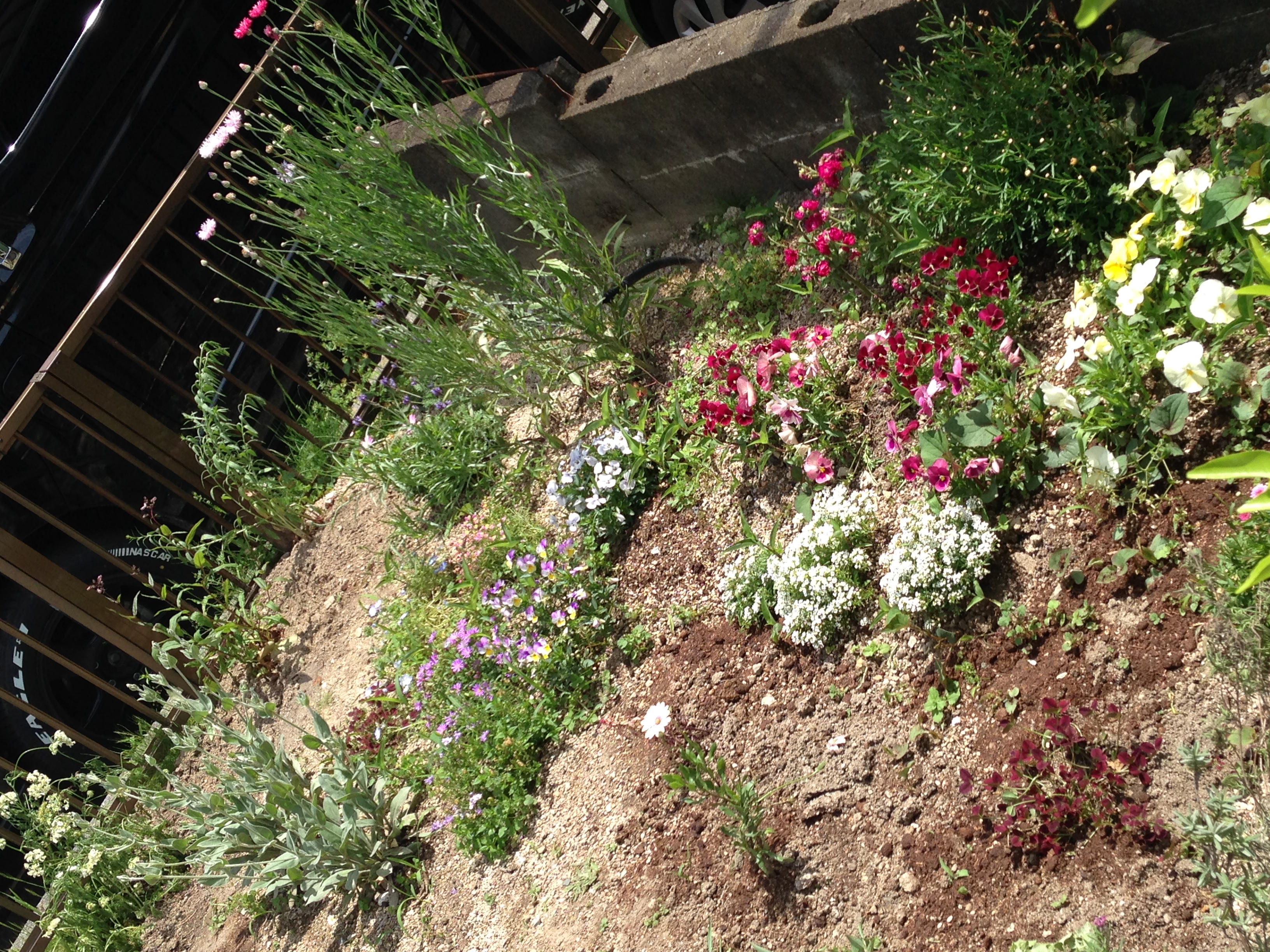お庭にお花のある暮らしを少しずつ・・。