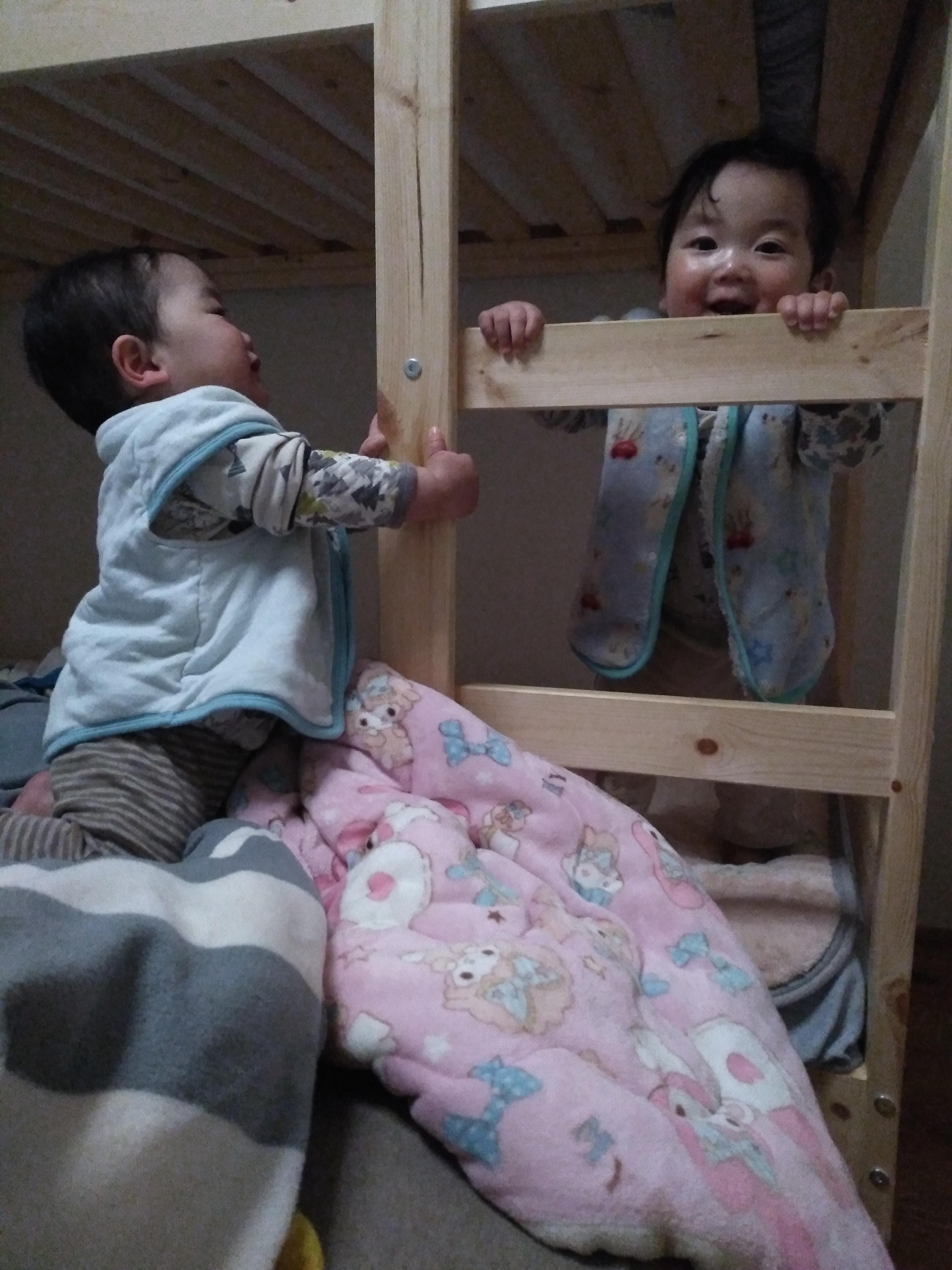 最近の双子(11ヶ月) 1歳の誕生日プレゼントはきっとコレ。